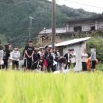 真国御田米作り~米作り実践アートプロジェクト~「稲刈り」 プロジェクト研究班による報告