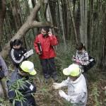 地域デザイン 葡萄櫨の原木調査 「県の視察2回目 実の採取及びお墓調査」