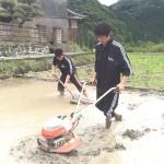 真国御田米作り~米作り実践アートプロジェクト~「田植え」